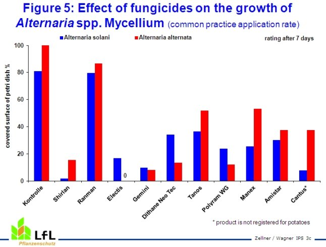 Effect of fungicides on the growth