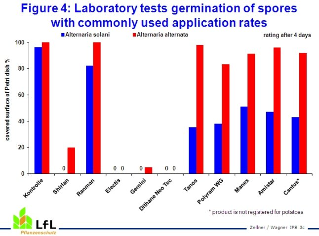 Laboratory tests germination of spores